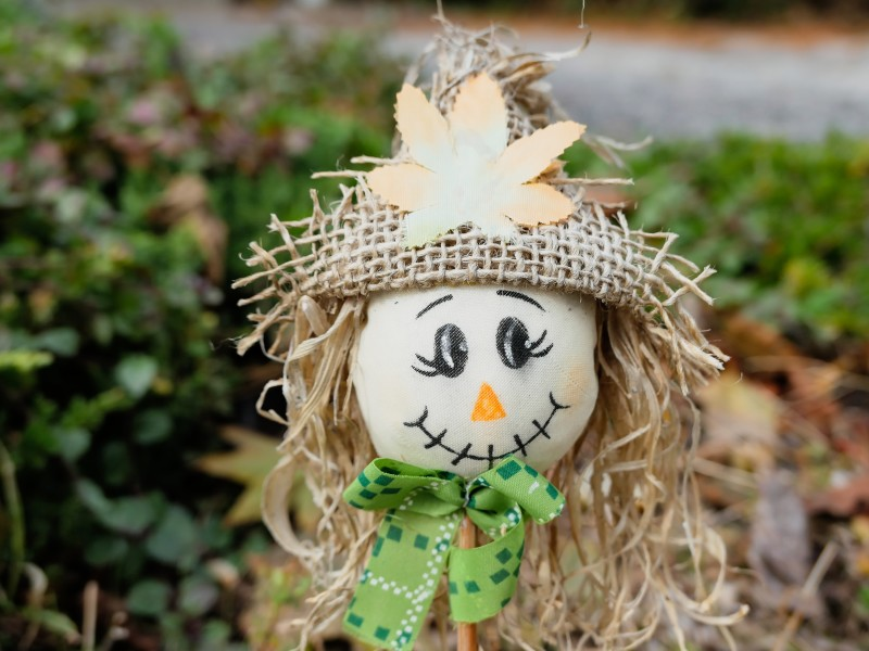 Photo of a scarecrow with a hat and green scarf